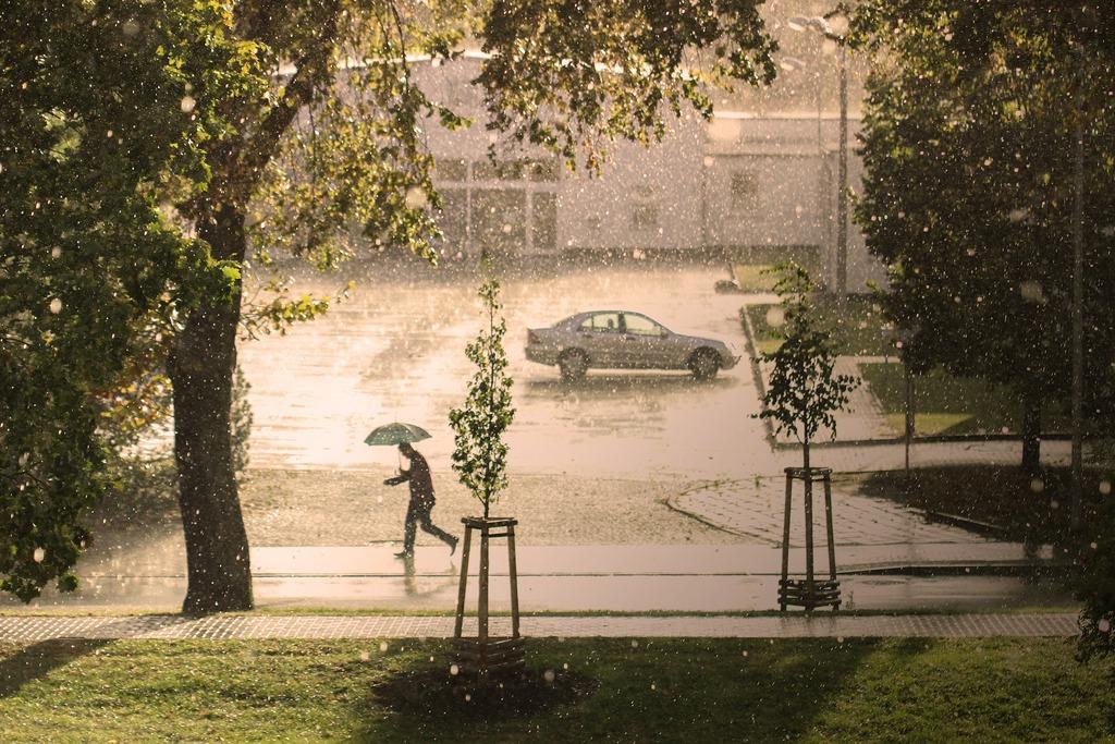 ulewny dzień w mieście, uciekający pod parasolem mężczyzna, w tle samochód i budynek
